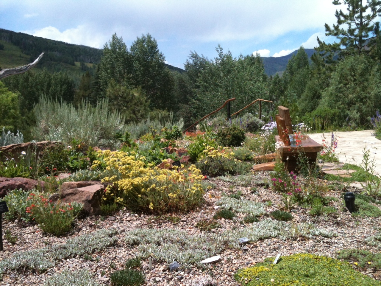 betty ford alpine gardens vail plant select. Cars Review. Best American Auto & Cars Review