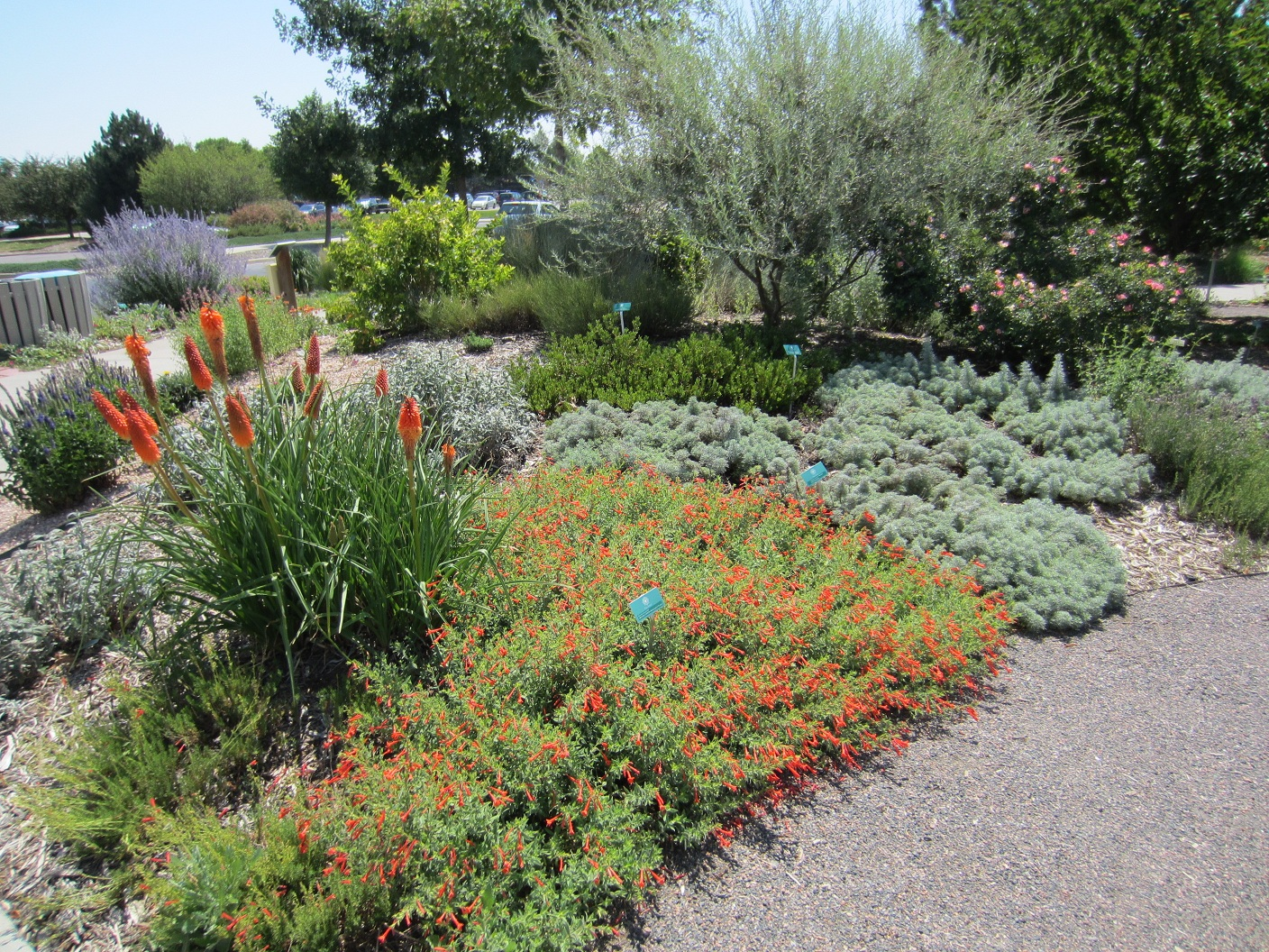 City of broomfield xeriscape demonstration garden plant for Dry scape landscaping