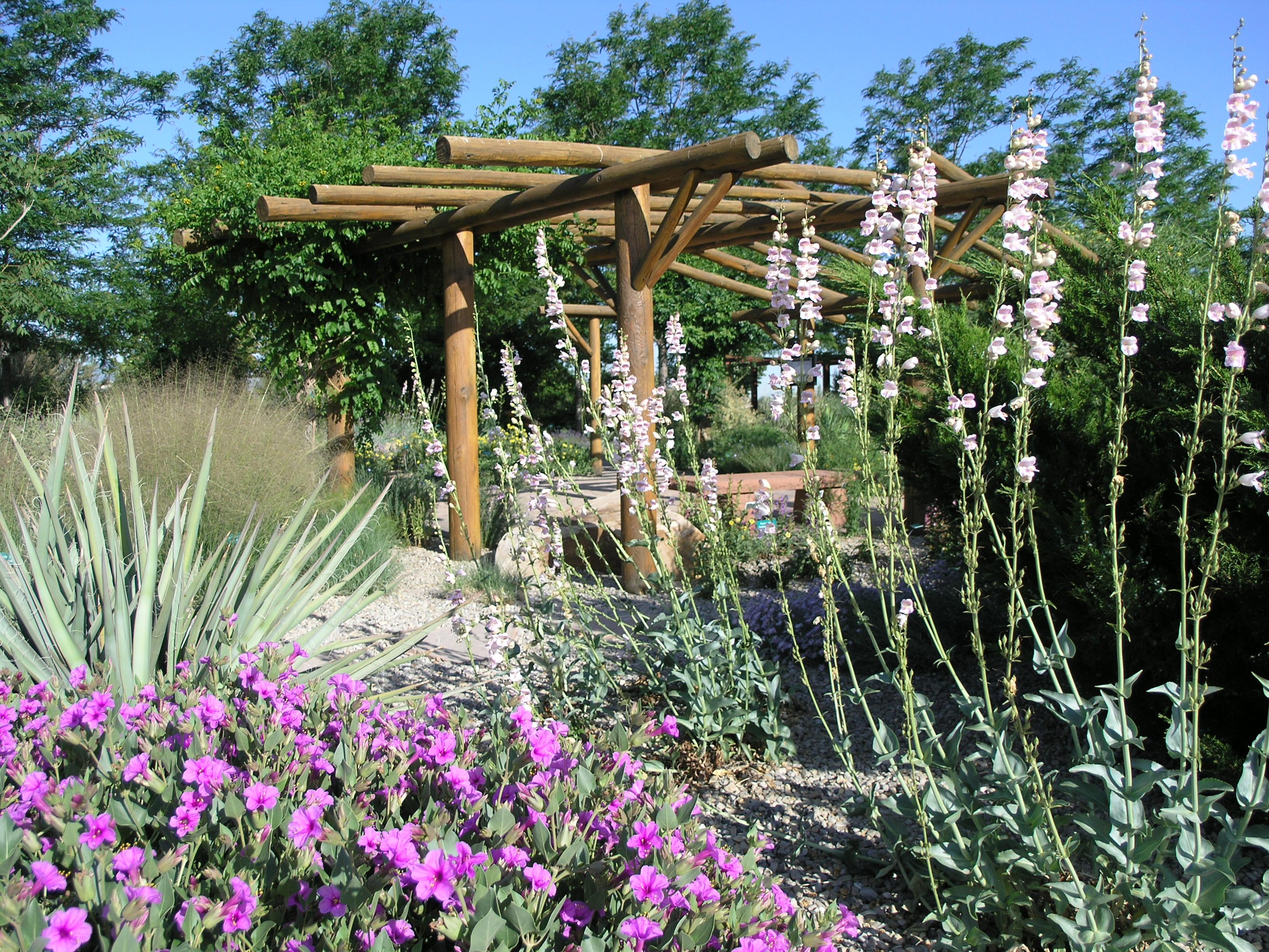 Garden Bush: Conservation Garden Park (West Jordan)