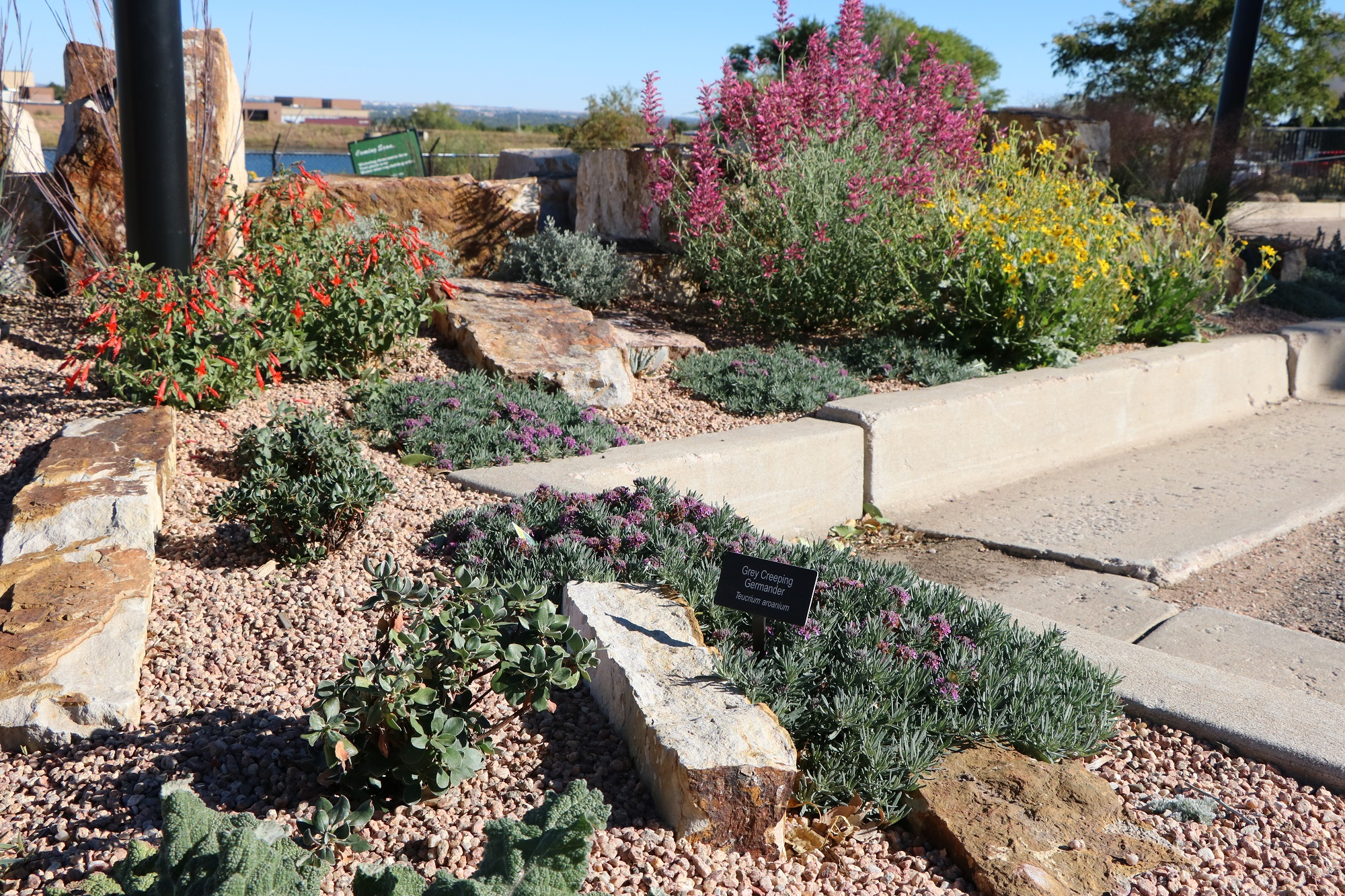 Colorado Springs Utilities Xeriscape Demonstration Garden