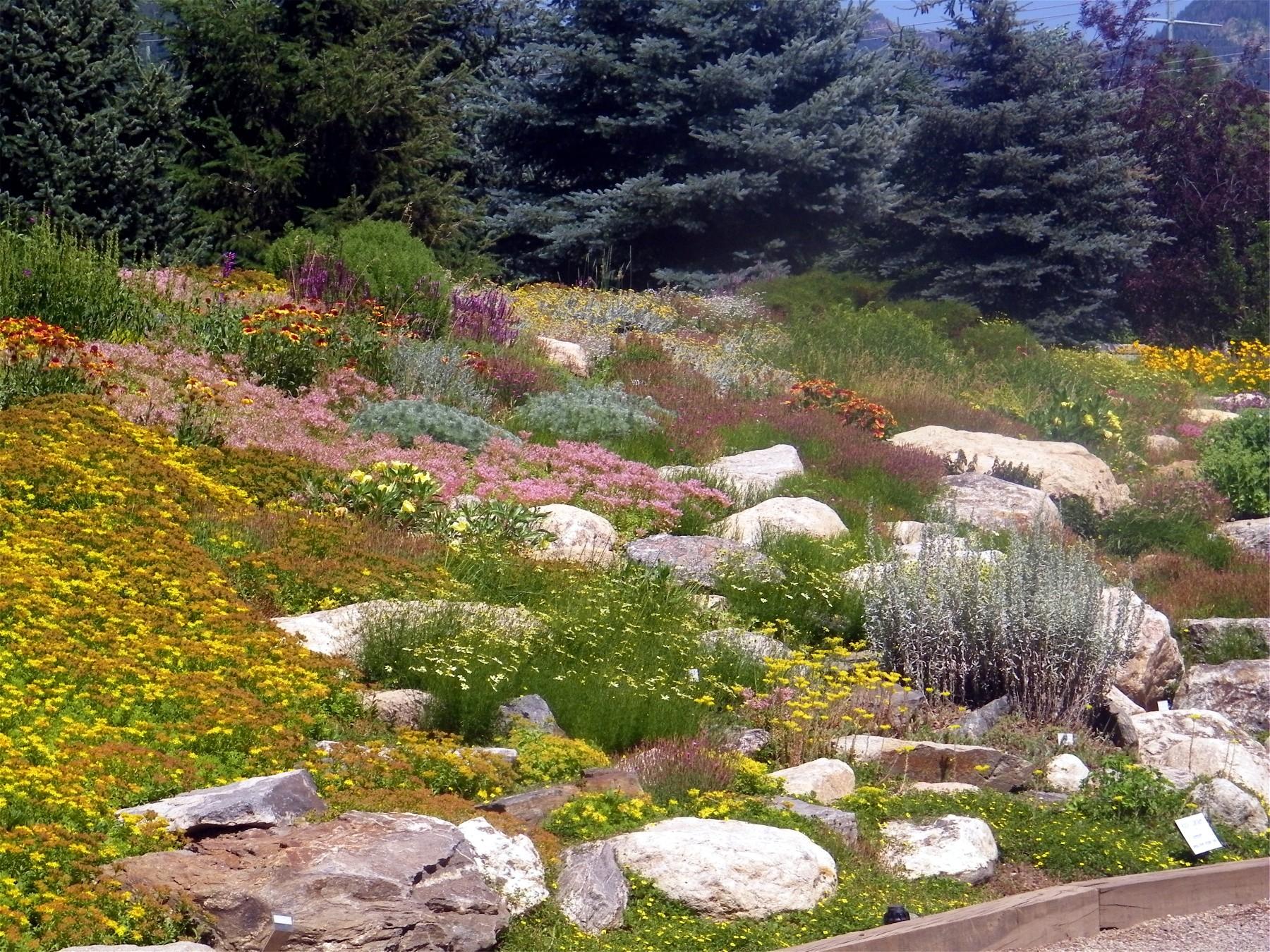 steamboat springs botanical gardens garden ftempo